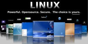 scegli linux